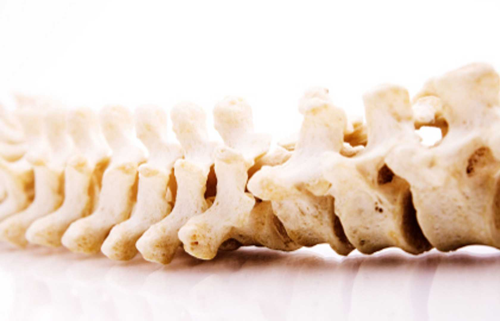 osteopatia-elda1